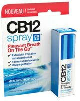 CB 12 Spray haleine fraîche 15ml à Saint Denis