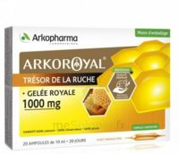 Arkoroyal Gelée royale 1000 mg Solution buvable 20 Ampoules/10ml à Saint Denis