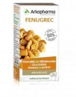 Arkogelules Fenugrec Gélules Fl/45 à Saint Denis
