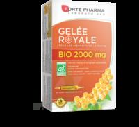Forte Pharma Gelée royale bio 2000 mg Solution buvable 20 Ampoules/15ml à Saint Denis
