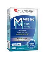 Magné 300 Marin (2 mois) à Saint Denis